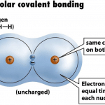 What is Nonpolar Covalent Bond? Compounds & Properties